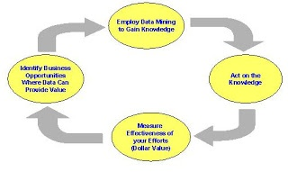 Data Mining Cycle